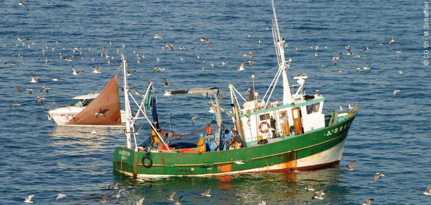 bateau de peche cote francaise